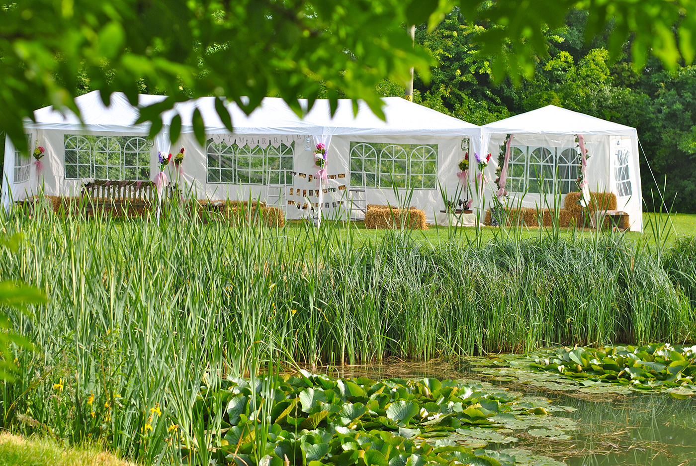 Wedding Marquee at Bellows Mill